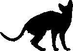 Cornish-Rex-Umriss
