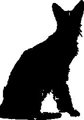 Savannah-Cat-Umriss