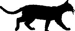 Bengal-Umbriss5cd3e1b8b865c